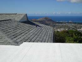 Shingles & Flat Roof